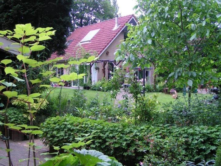 Wighenerhorst